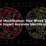 Bacterial Identification: How Mixed Cultures Can Impact Accurate Identification