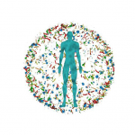 Gut Microbiome Anaerobes: Taking a Closer Look